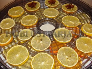 3.sušenje lmon