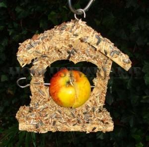 1. ptičja hišica s semeni  (3)