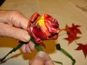 3.postopek  jesensko ustvarjanje vrtnice iz javorovih , lučke (13)