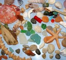 na plaži najdemo pravi zaklad